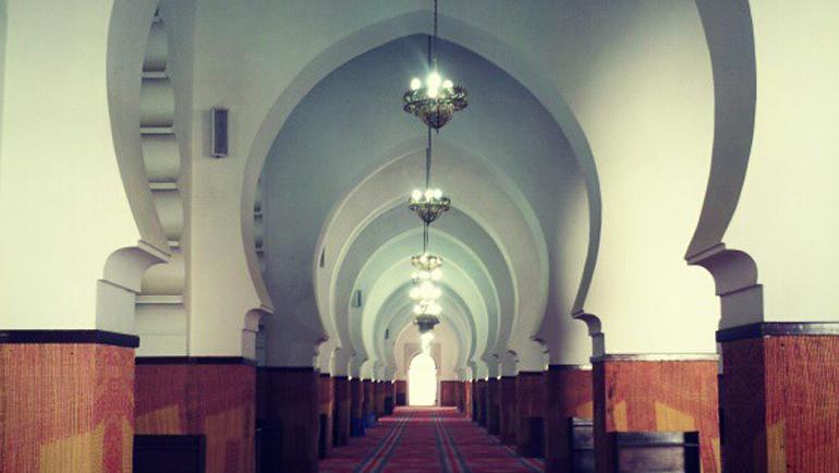 تجديد العلوم الإسلامية: مسار أمة ومصيرها