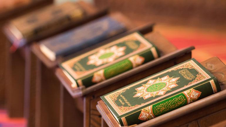 أسباب الاختلاف في تفسير القرآن الكريم: رؤية منهجية