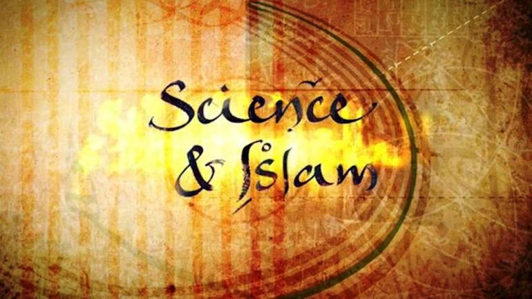 بنية الثقافة العلمية في ظل الحضارة الإسلامية